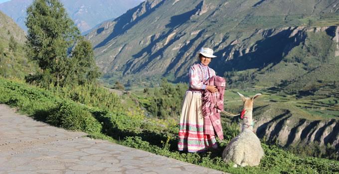 arequipa-colca-canyon-trekking-7